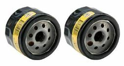 2 pack of genuine briggs and stratton